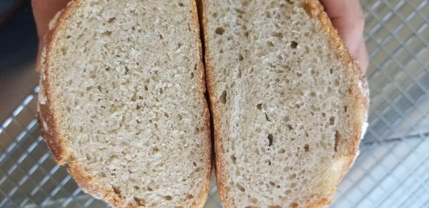 לחמים בהידרציה נמוכה - השמאלי הדחוס יותר עם קמח אורז מלא והימיני עם לבן