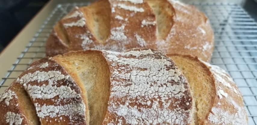 לחם מקמח אורז