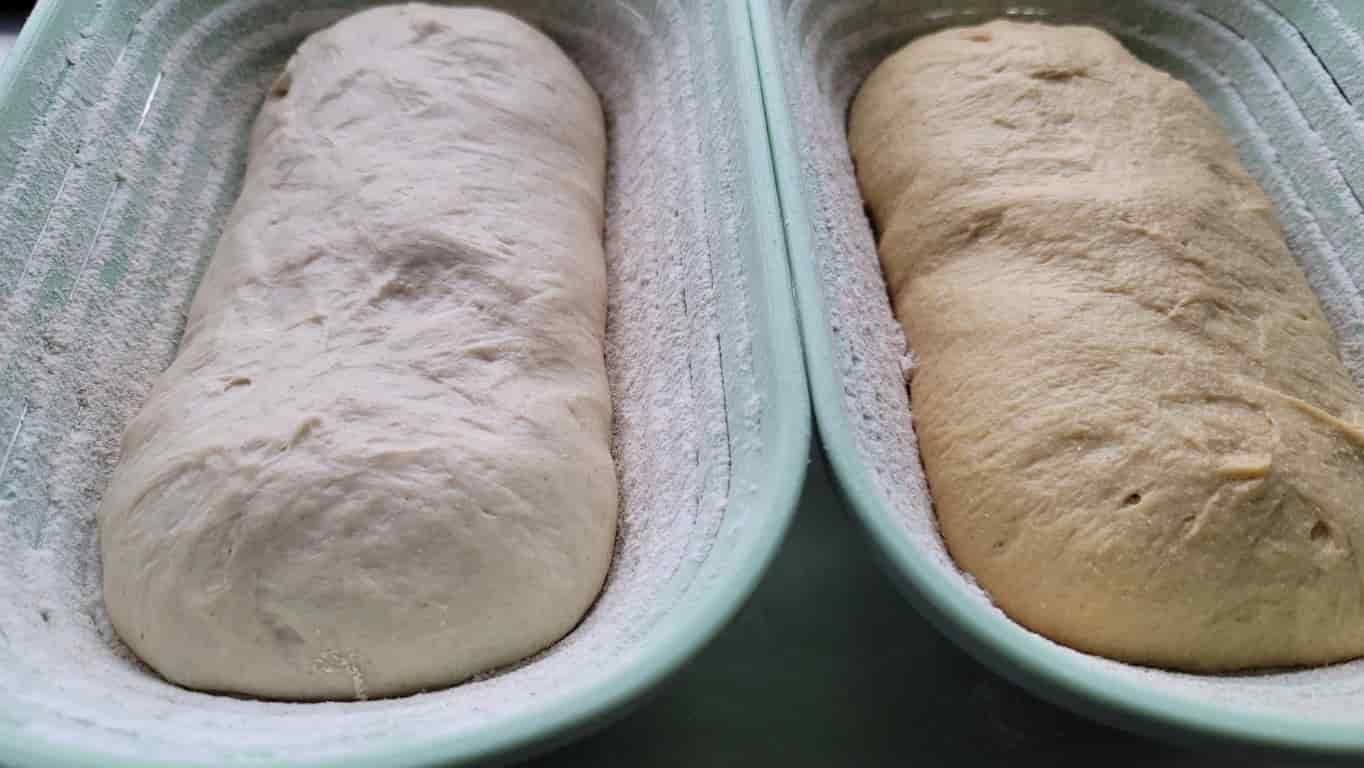 קמח חומוס אל מול קמח חיטה
