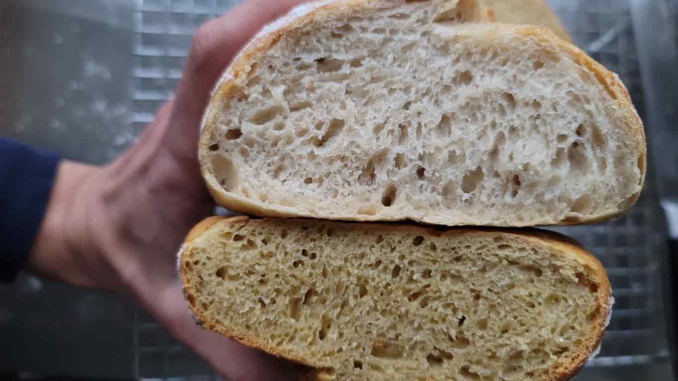 קמח חומוס ולחם